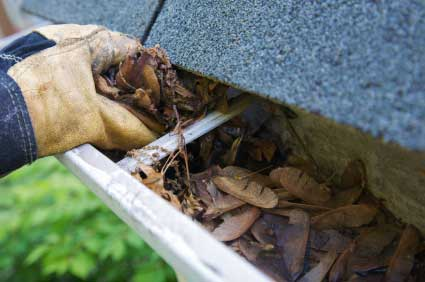 Cleaning Eavestroughs